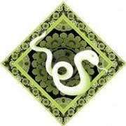 Восточный гороскоп. Змея