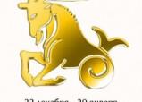 Камни по знакам зодиака Козерог (22 декабря – 20 января)