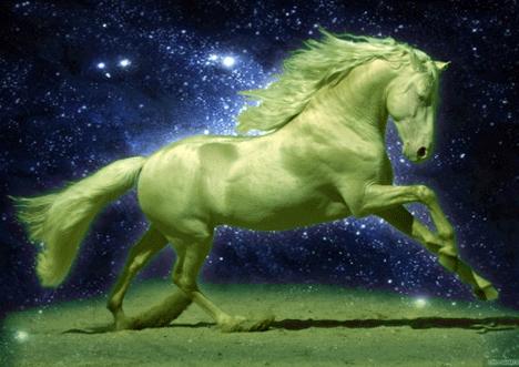 Приметы на год зеленой деревянной лошади
